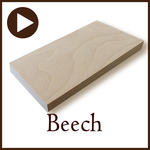 beech_b.jpg