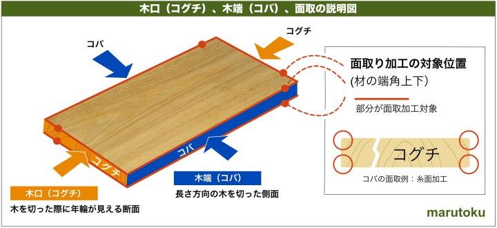 koguchi_koba_mentori_d.jpg