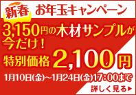 bn_campaign_1401.jpg