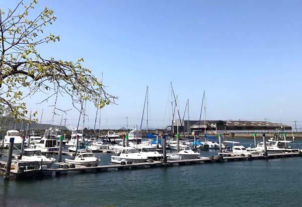 2017marutoku_harbor.jpg
