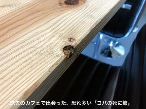 fushi_300tex.jpg